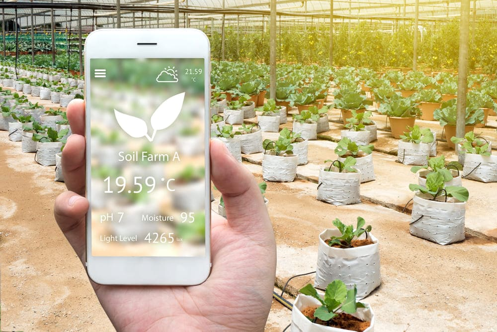 iot-agriculture-monitoring-solutions